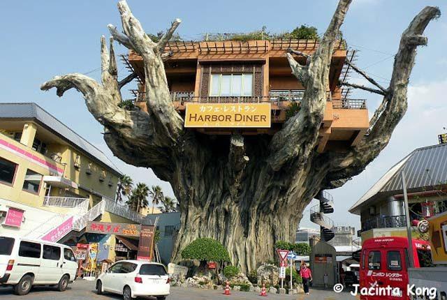 ყველაზე უცნაური რესტორნები