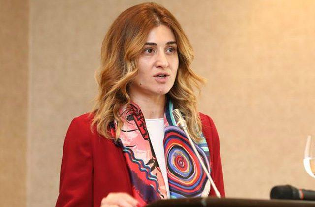 """ირინე აბულაძე, განათლების მინისტრის მოადგილე - """"დედალი ჯეჯე"""""""