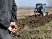 რამდენი ჰექტარი მიწა შეიძინეს უცხოელებმა საქართველოში