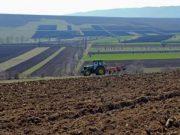 ფერმერები 1 ჰექტარ მიწაზე სახელმწიფოსგან 200 ლარის ოდენობით დახმარებას მიიღებენ