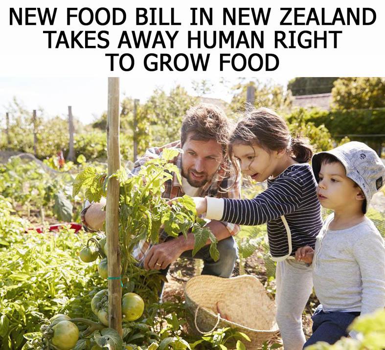 ახალ ზელანდიაში ადამიანებს საზრდოს მოყვანის უფლებას ართმევენ