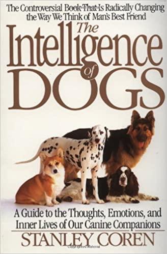 ყველაზე ჭკვიანი ძაღლები
