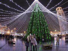 ყველაზე ლამაზი ნაძვის ხე ევროპაში