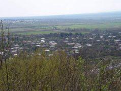 სოფელი ფშაველი