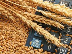 Грузия ворвалась в пятерку самых активных импортеров российского зерна